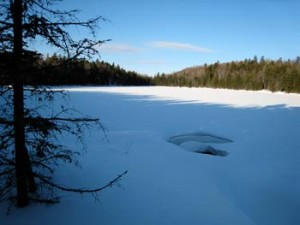 Cow Mountain Pond, Granby Donated in 1998 First Forest Legacy Project in the Nation